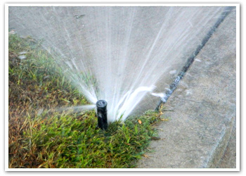 sprinkler repair service in rockwall texas